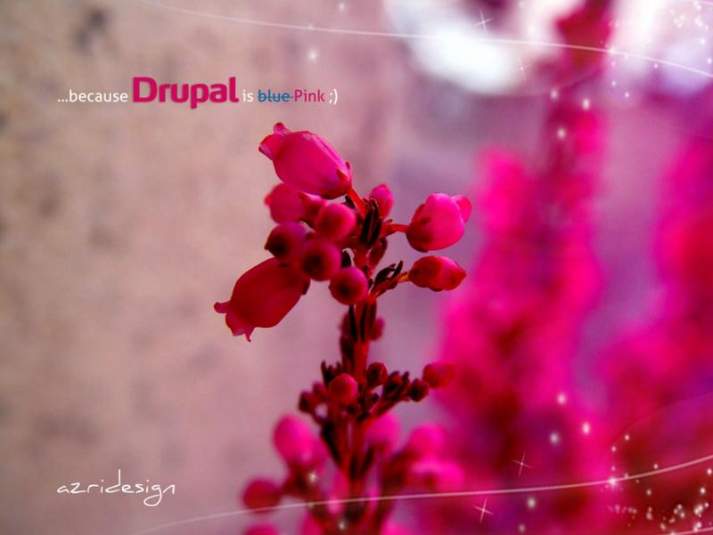 Top Most Beautiful Drupal based Websites of 2012